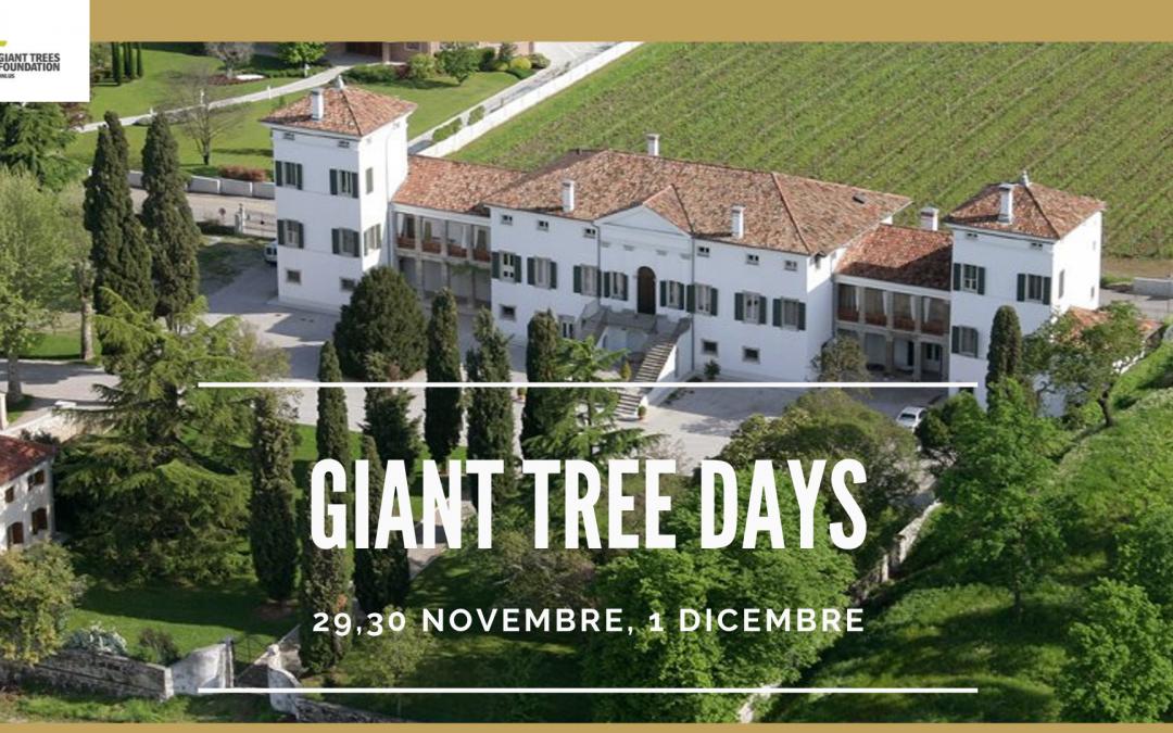 Curare e gestire gli alberi e le foreste oggi – Convegno Internazionale
