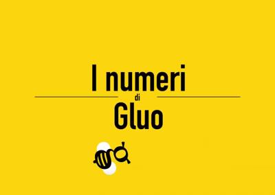 I numeri di Gluo